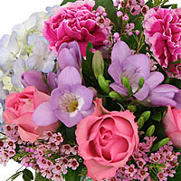 send Flowers Valga